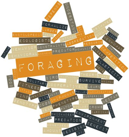 forage: Abstract word cloud for Foraging with related tags and terms Stock Photo