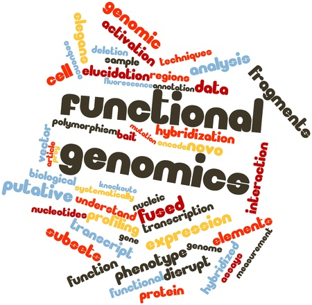 functional: Abstract word cloud for Functional genomics with related tags and terms Stock Photo