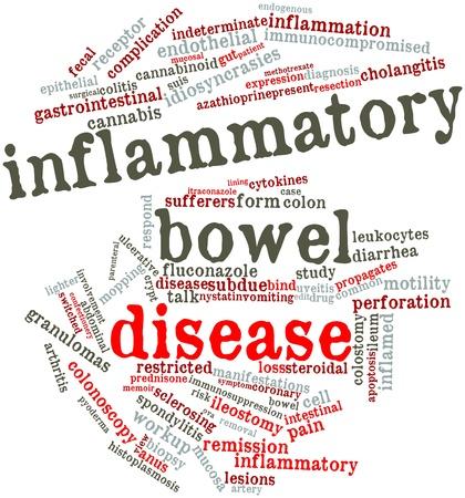 bowel disease: Nube palabra abstracta para la enfermedad inflamatoria intestinal con etiquetas y t�rminos relacionados