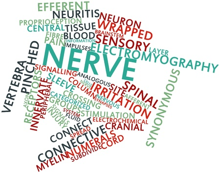 carpal tunnel: Abstract word cloud for Nerve with related tags and terms