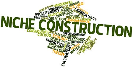 implications: Abstract word cloud for Niche construction with related tags and terms
