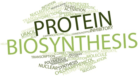 polymerase: Abstract word cloud for Protein biosynthesis with related tags and terms Stock Photo