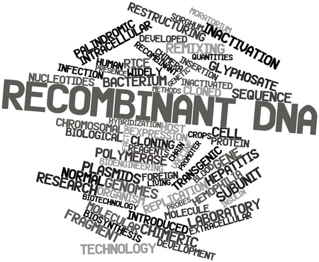 obtained: Abstract word cloud for Recombinant DNA with related tags and terms