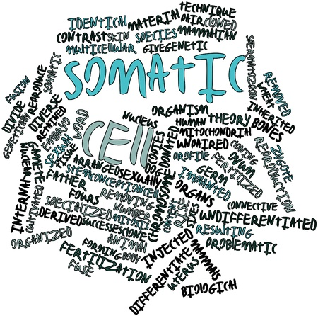 Abstract word cloud for Somatic cell with related tags and terms Stock Photo - 16679283