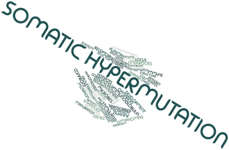 neighboring: Abstract word cloud for Somatic hypermutation with related tags and terms