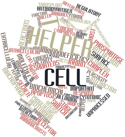 macrophage: Abstract word cloud for T helper cell with related tags and terms Stock Photo