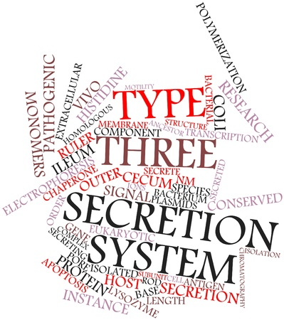 gastroenteritis: Abstract word cloud for Type three secretion system with related tags and terms