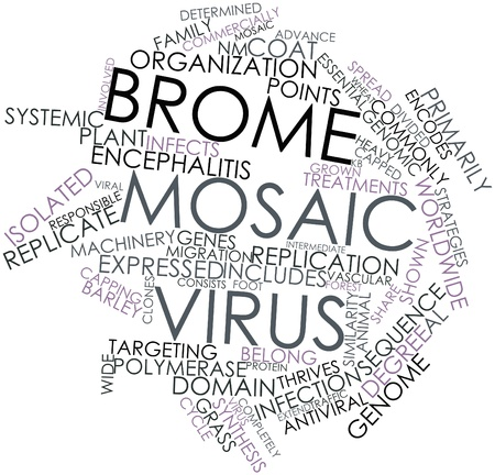 capping: Abstract word cloud for Brome mosaic virus with related tags and terms