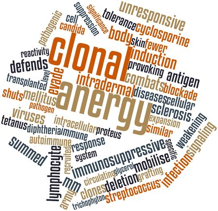 Abstract word cloud for Clonal anergy with related tags and terms Stock Photo - 16720725