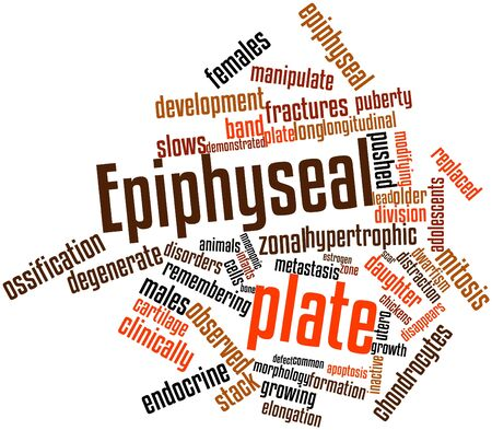 daughter cells: Abstract word cloud for Epiphyseal plate with related tags and terms