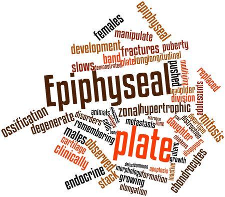 alargamiento: Nube palabra abstracta para placa epifisaria con etiquetas y t�rminos relacionados
