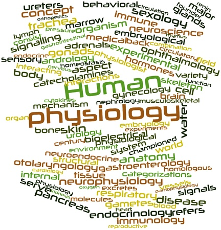 Abstract word cloud for Human physiology with related tags and terms photo