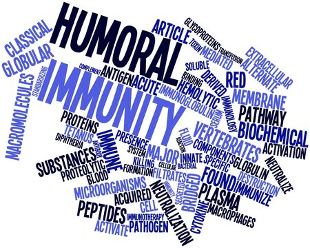 macrophages: Abstract word cloud for Humoral immunity with related tags and terms
