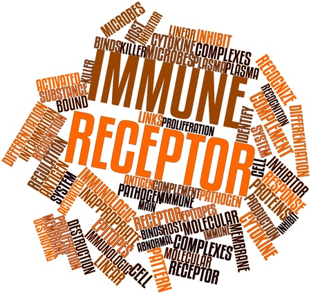 Abstract word cloud for Immune receptor with related tags and terms Stock Photo - 16720954