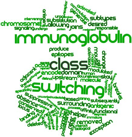 immunoglobulin: Abstract word cloud for Immunoglobulin class switching with related tags and terms Stock Photo