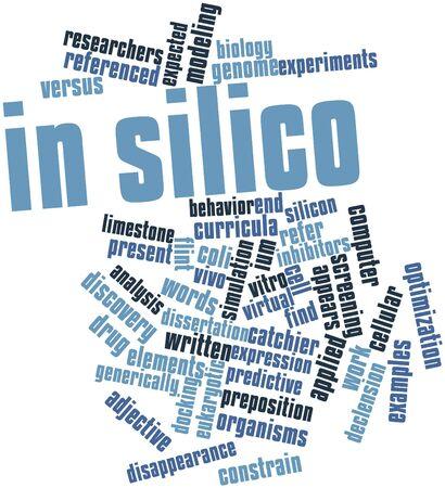 characterize: Nube palabra abstracta para In silico con etiquetas y t�rminos relacionados Foto de archivo