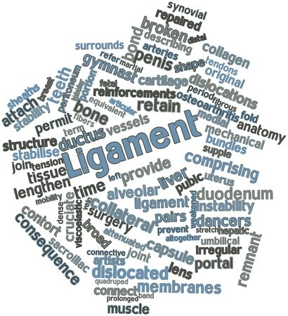 Abstract word cloud for Ligament with related tags and terms Stock Photo - 16720633