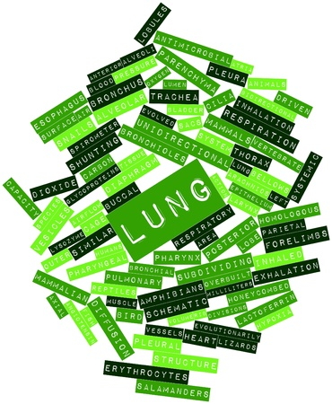 Abstract word cloud for Lung with related tags and terms photo