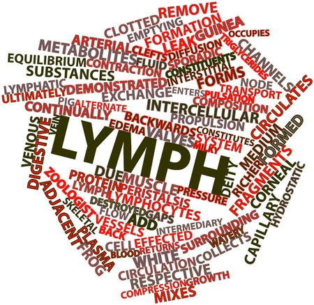 emptying: Abstract word cloud for Lymph with related tags and terms Stock Photo