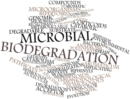 Abstract word cloud for Microbial biodegradation with related tags and terms