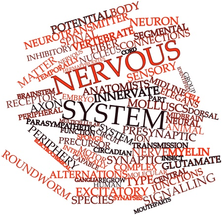inhibitory: Abstract word cloud for Nervous system with related tags and terms Stock Photo