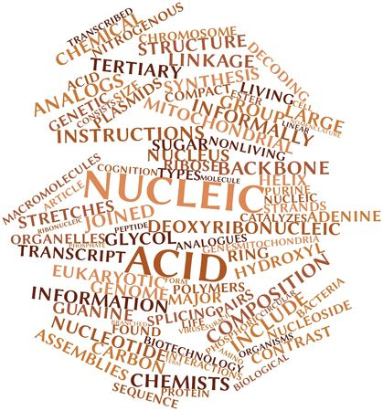 uracil: Abstract word cloud for Nucleic acid with related tags and terms Stock Photo