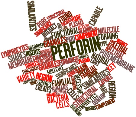 Abstract word cloud for Perforin with related tags and terms photo