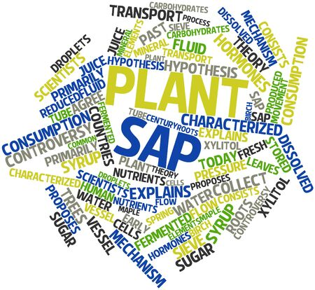 sap: Abstract word cloud for Plant sap with related tags and terms