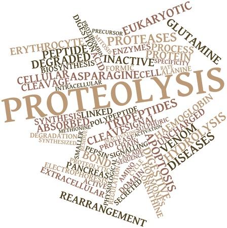 apoptosis: Nube palabra abstracta por proteolisis con etiquetas y t�rminos relacionados