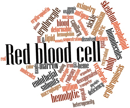 biomolecules: Abstract word cloud for Red blood cell with related tags and terms