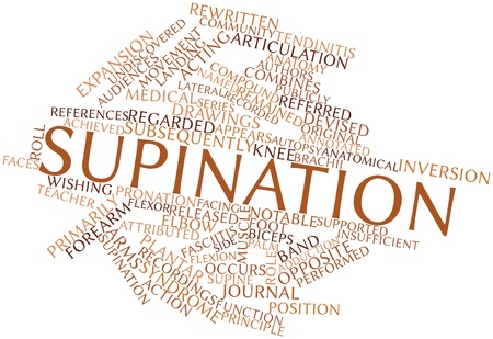 attributed: Abstract word cloud for Supination with related tags and terms Stock Photo