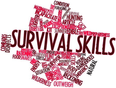 reckoning: Abstract word cloud for Survival skills with related tags and terms