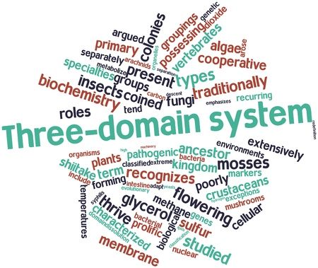 coined: Abstract word cloud for Three-domain system with related tags and terms