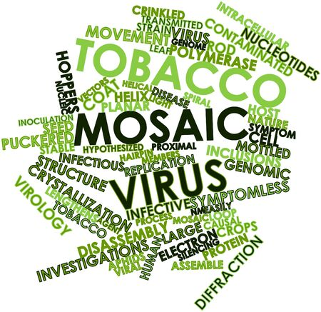 infective: Abstract word cloud for Tobacco mosaic virus with related tags and terms Stock Photo