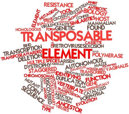 transpozycji: Abstract cloud słowo transpozycji elementu z powiązanych tagów oraz warunków Zdjęcie Seryjne