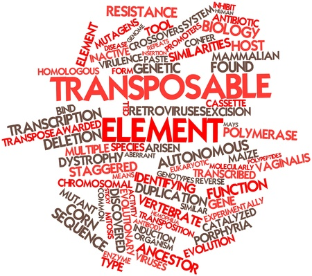 polymerase: Abstract word cloud for Transposable element with related tags and terms Stock Photo