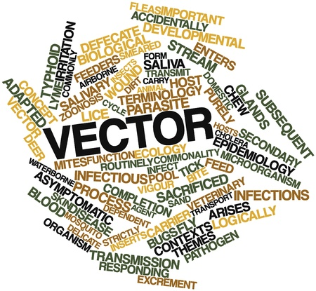 arises: Abstract word cloud for Vector with related tags and terms