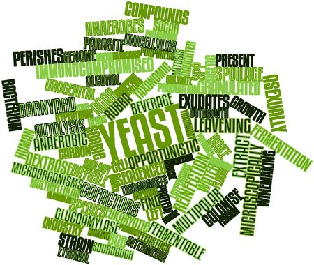 Abstract word cloud for Yeast with related tags and terms Stock Photo - 16720926