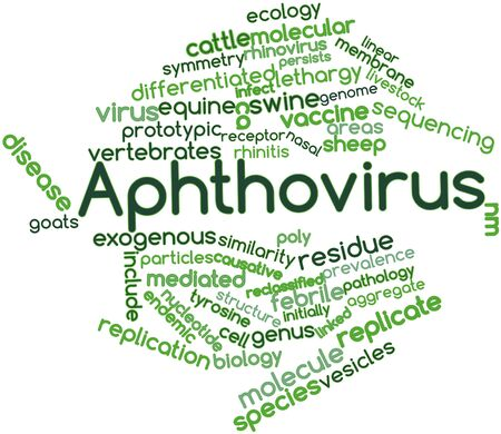 nm: Abstract word cloud for Aphthovirus with related tags and terms Stock Photo