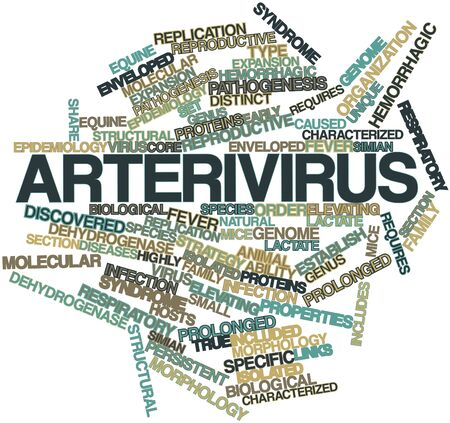 pathogenesis: Abstract word cloud for Arterivirus with related tags and terms