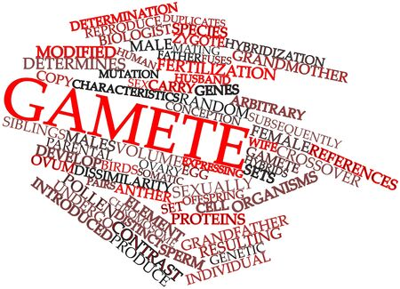 Abstract word cloud for Gamete with related tags and terms Stock Photo - 16739430