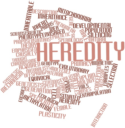 Abstract word cloud for Heredity with related tags and terms Stock Photo - 16739258
