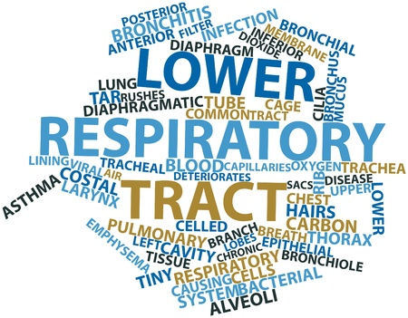 respiratory tract: Abstract word cloud for Lower respiratory tract with related tags and terms