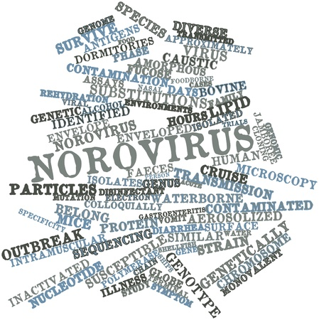 assays: Abstract word cloud for Norovirus with related tags and terms Stock Photo