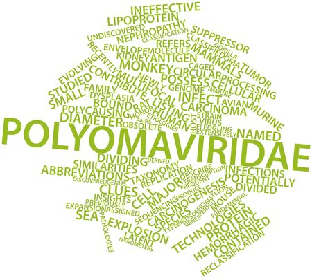 Abstract word cloud for Polyomaviridae with related tags and terms photo