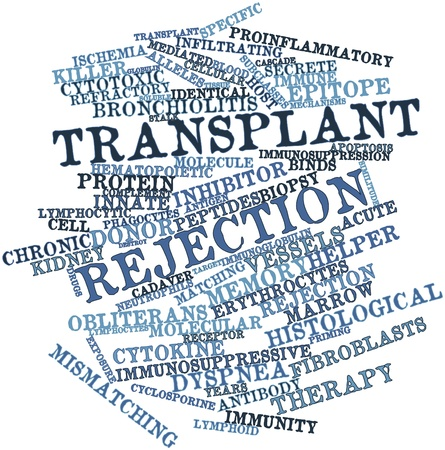 manifests: Abstract word cloud for Transplant rejection with related tags and terms