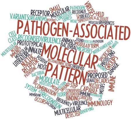 Abstract word cloud for Pathogen-associated molecular pattern with related tags and terms Stock Photo - 16740215