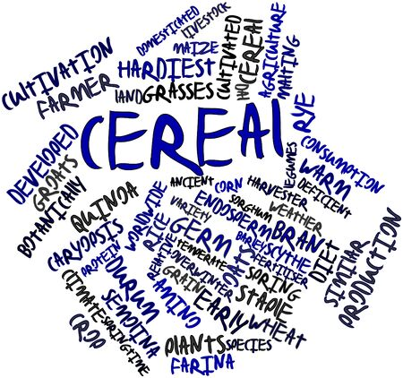 Abstract word cloud for Cereal with related tags and terms Stock Photo - 16772819