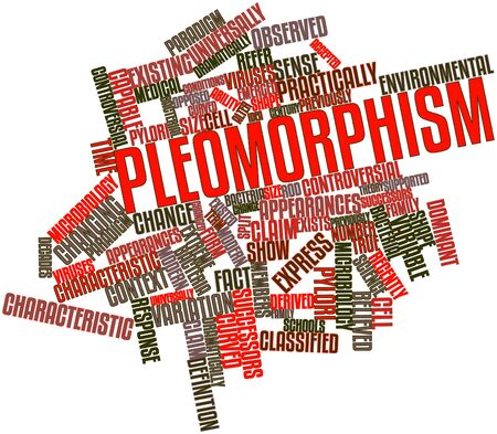 Abstract word cloud for Pleomorphism with related tags and terms Stock Photo - 16772852