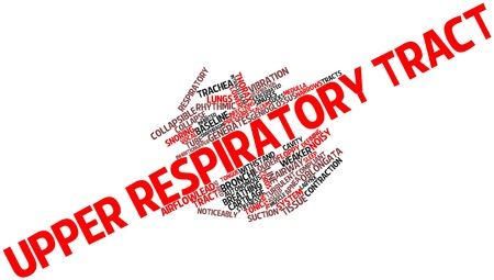 Abstract word cloud for Upper respiratory tract with related tags and terms photo